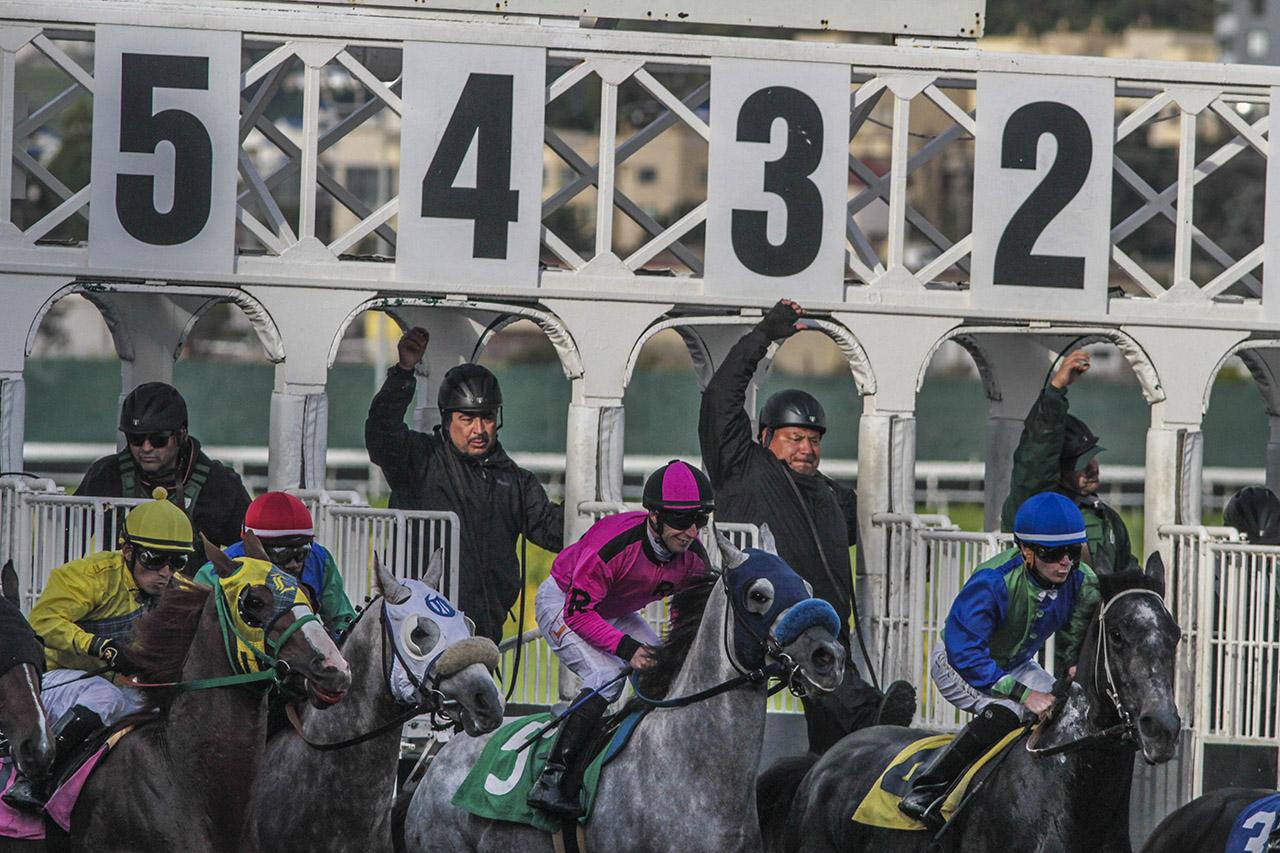 Races_03_Ludowitz