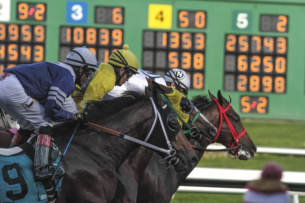Races_06_Ludowitz