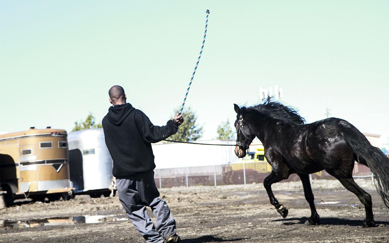 02_horsestable_melles